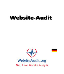 Website Audit DE